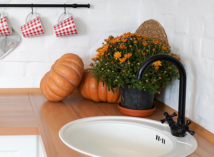 Flores de interior de otoño