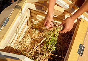 Como hacer compost en casa en 7 sencillos pasos